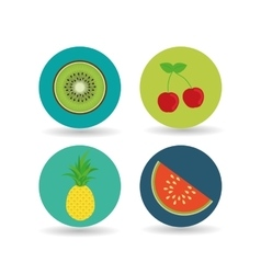 Fruit over circle design vector