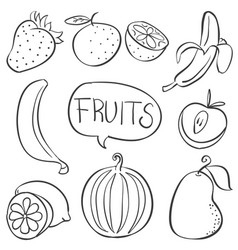 collection fruit hand draw doodles vector image vector image