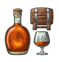Glass barrel and bottle of cognac vintage vector