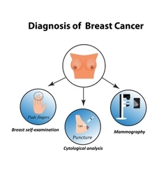 Methods of diagnosis of breast cancer Mammography vector image
