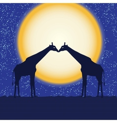 Card with giraffe pair at night vector