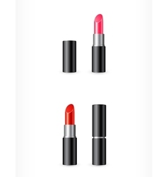 Isolated red and pink lipstick vector