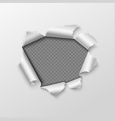 Paper hole with torn edges isolated on transparent vector