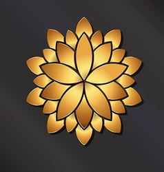 Flower golden mandala vector