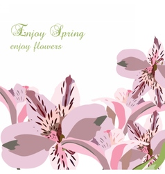 Lily flowers bouquet card vector