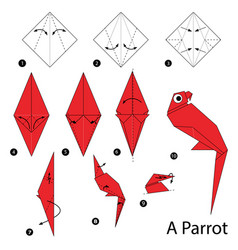 Step instructions how to make origami a parrot vector
