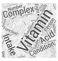 B Complex Vitamin Word Cloud Concept vector image vector image