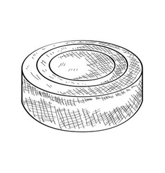 sketch of a hockey puck vector image