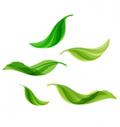 Flying leaves vector