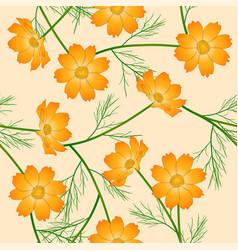 Orange yellow cosmos flower on ivory beige vector