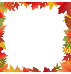 Color autumn frame vector