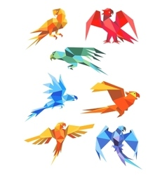 Colorful origami paper stylized parrots vector
