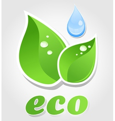 Eco leaf symbol vector