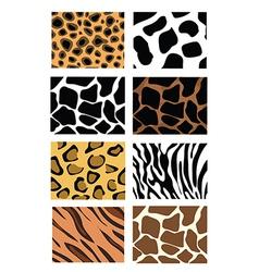Animal print sets vector
