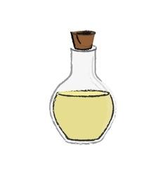 spa oil bottle vector image