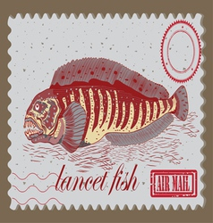 Lancet fish vector