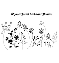 Floral template with stylized herbs and plants vector