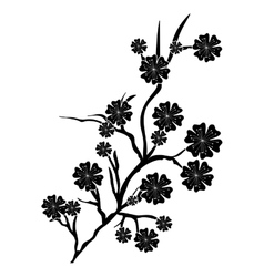 Cherry blossom icon iimage vector