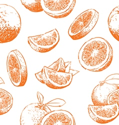 Orange fruit pattern including seamless on vector