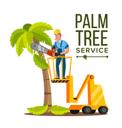 Palm tree care trimming tree or removal to vector