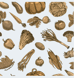 seamless pattern with sketch of vegetables and vector image vector image