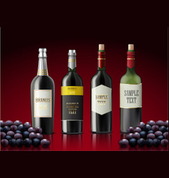 Set of bottles of champagne and grapes vector
