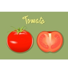 Red fresh tomato whole and half vector