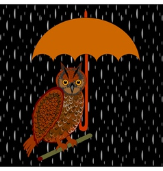 An owl with umbrella in the rain vector image