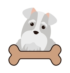 Cute dog and bone vector