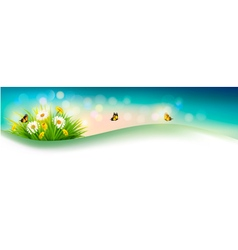 Nature summer background with grass flowers and vector