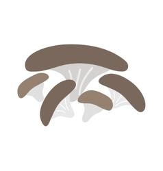 Mushrooms on white background vector image