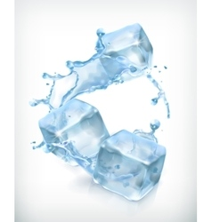 Ice cubes and a splash of water vector image vector image