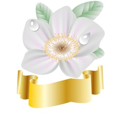 spring flower and gold ribbon vector image vector image