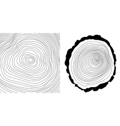 tree rings background and tree log cutted vector image