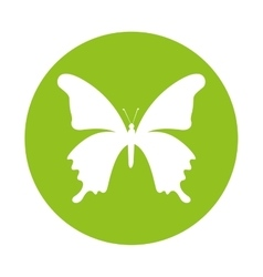 Cute butterfly ecology isolated icon vector