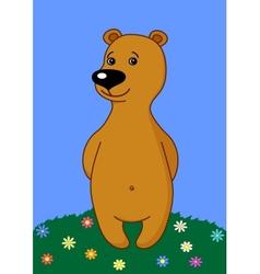 Teddy bear on a meadow vector image
