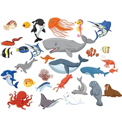 Cartoon sea animals isolated on white background vector image