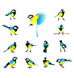 Flat icons of titmouse set winter birds in a flat vector