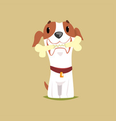 Jack russell puppy character with bone in its vector