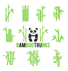 Bamboo icons set isolated on white vector