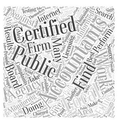 Where to find certified public accountants word vector