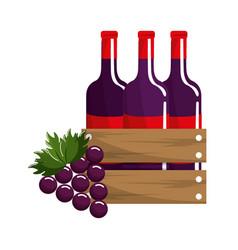 Bottles of wine and grape fruit tasty vector