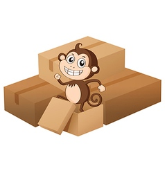 Monkey and boxes vector image vector image