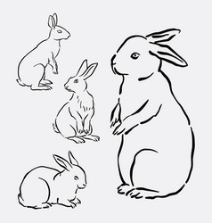 rabbit bunny hand drawing style vector image vector image