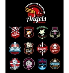 Sports teams high school university and college vector image