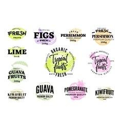 Exotic food labels set vector
