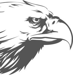 Eagle head side view silhouette vector