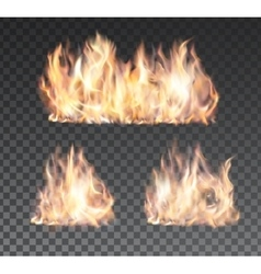 Set of realistic fire flames on transparent vector image