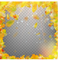 Frame with autumn leaves eps 10 vector