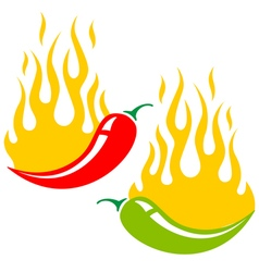 Chili fire vector